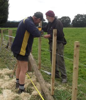 Fencing & lifestyle block / farmlet services in Wairarapa