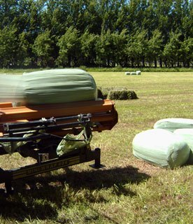 Baling service, bales and mini-bales for sale